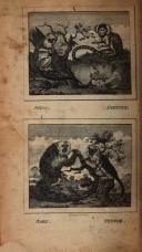 Σελίδα 372