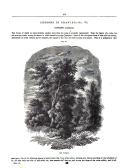Σελίδα 317