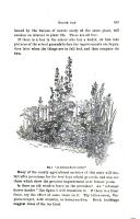Σελίδα 843
