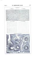 Σελίδα 197