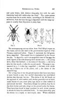Σελίδα 445