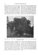 Σελίδα 52