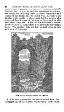 Σελίδα 46