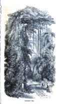 Σελίδα 99