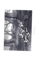 Σελίδα 256