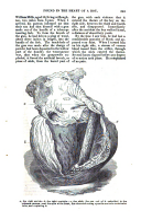 Σελίδα 345