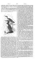 Σελίδα 477