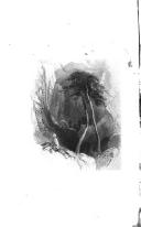 Σελίδα 316